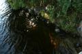 Вода Онды