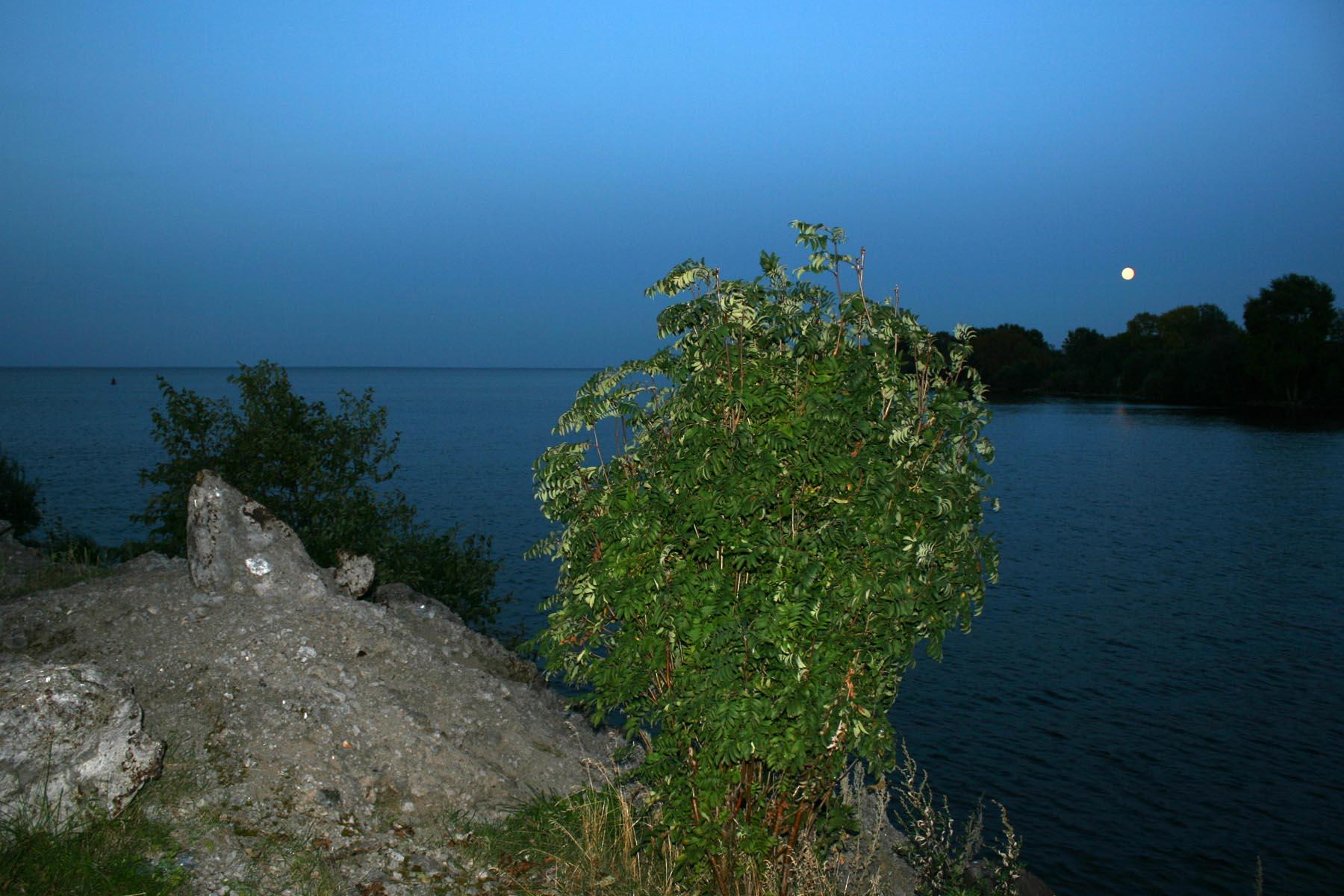 Белое озеро, ночь