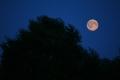 Луна над Белым озером