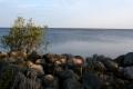 Берег Белого озера