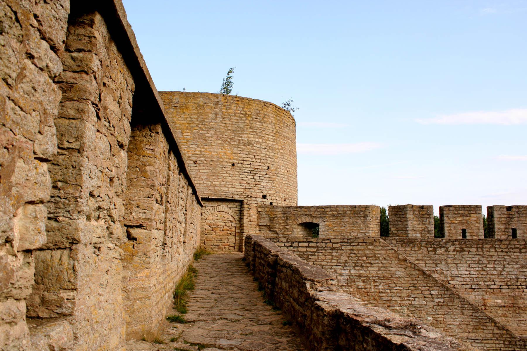 Длинношеяя башня