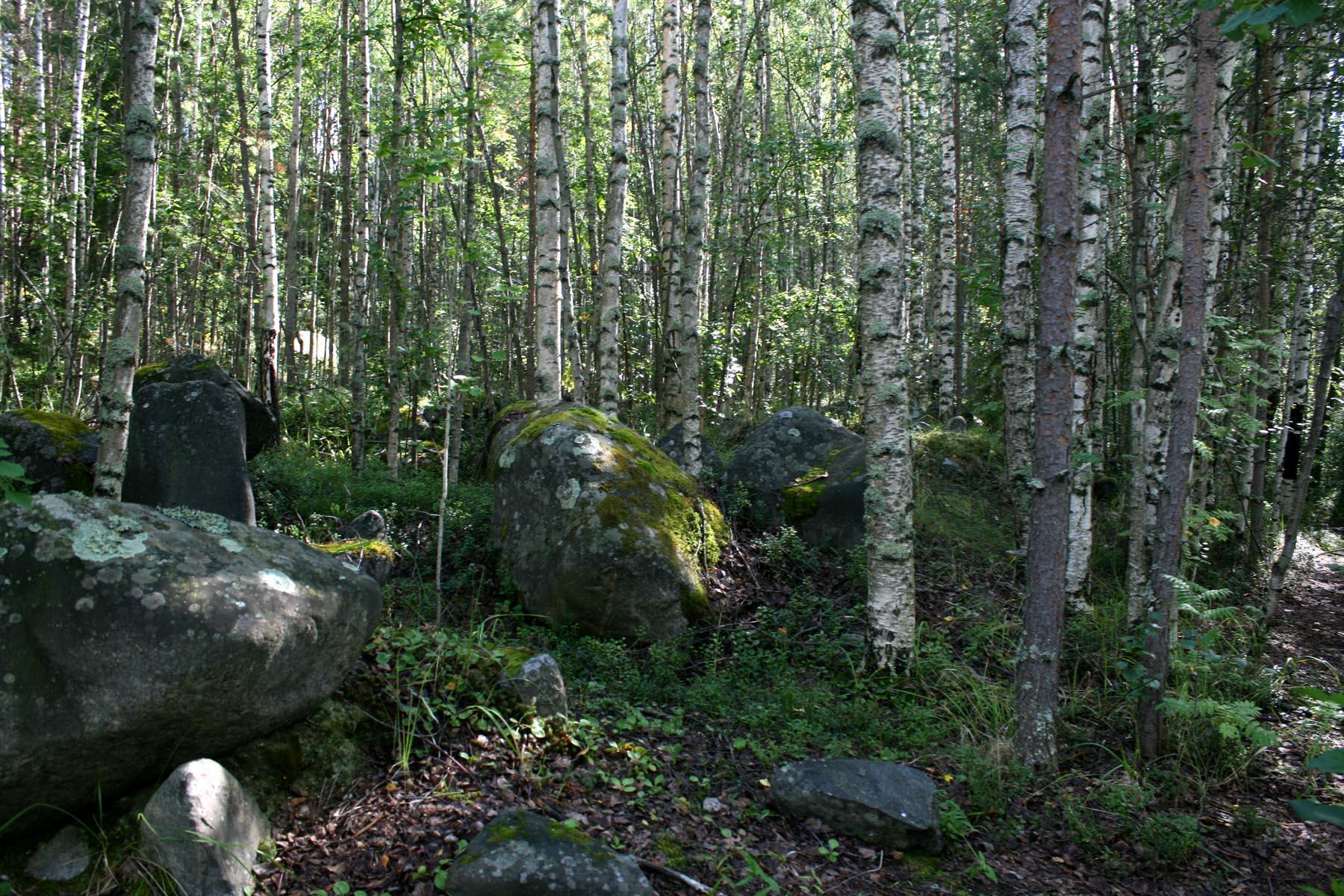 Камни в прозрачной роще