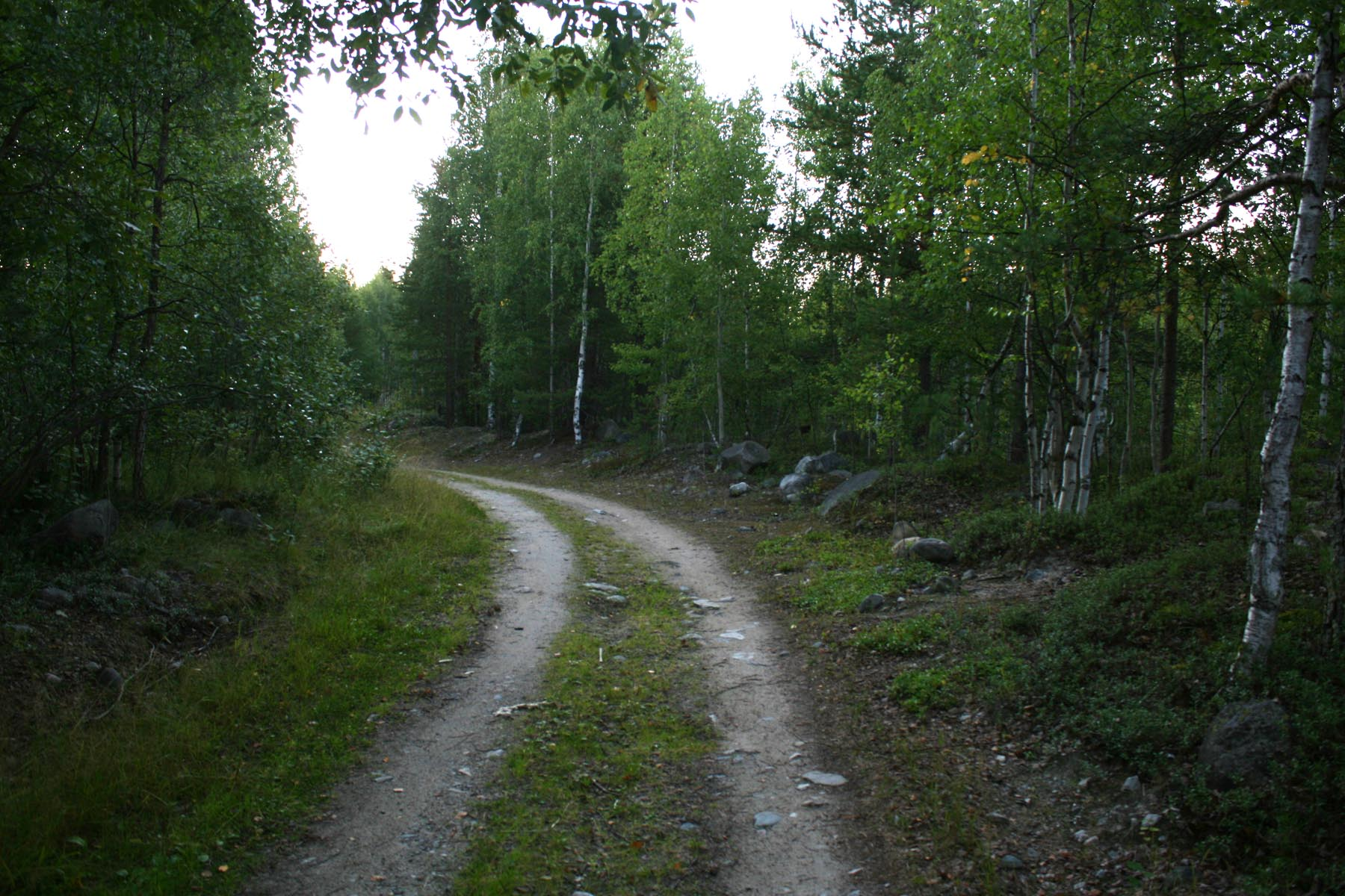 Дорога на дамбу