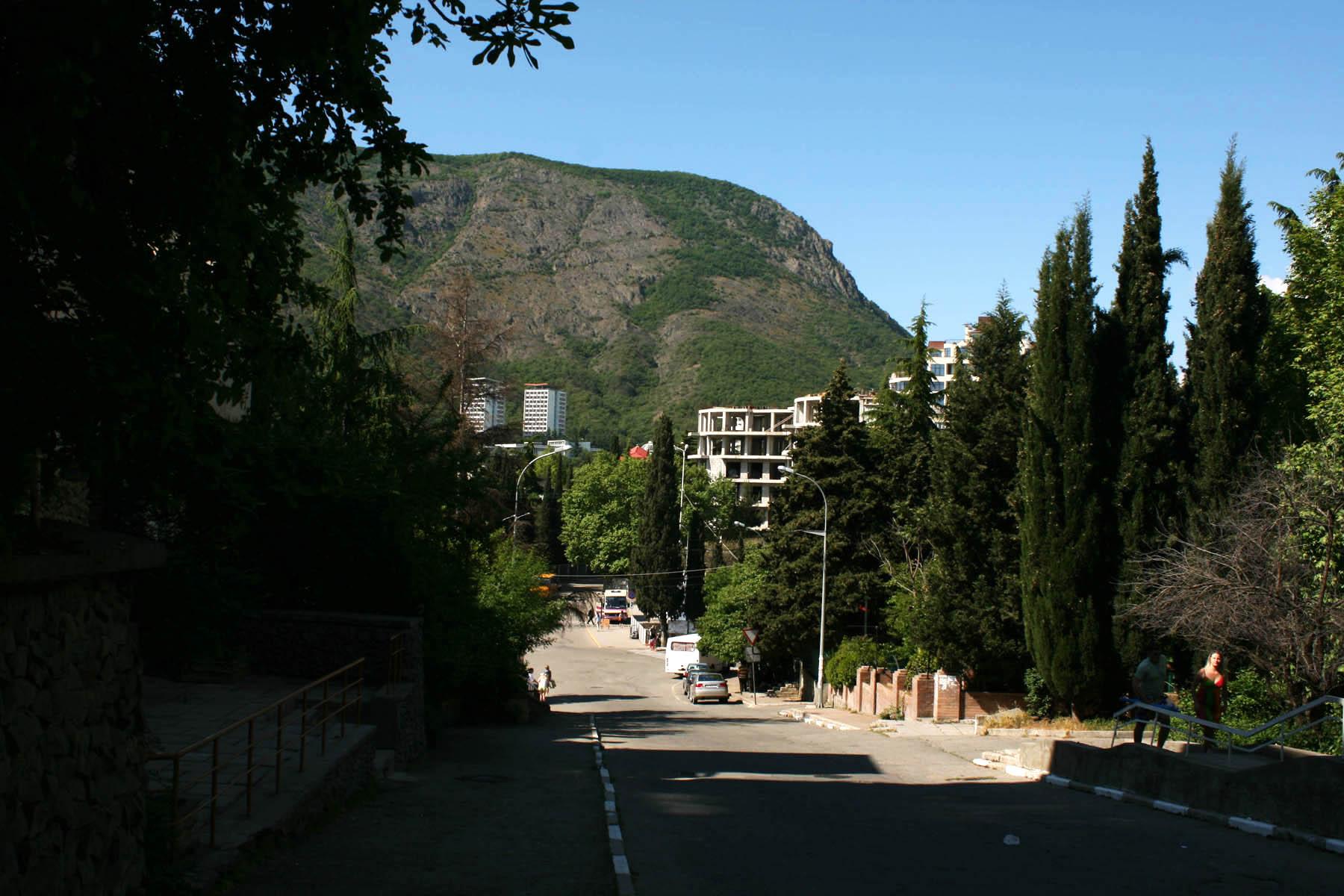 Партенит