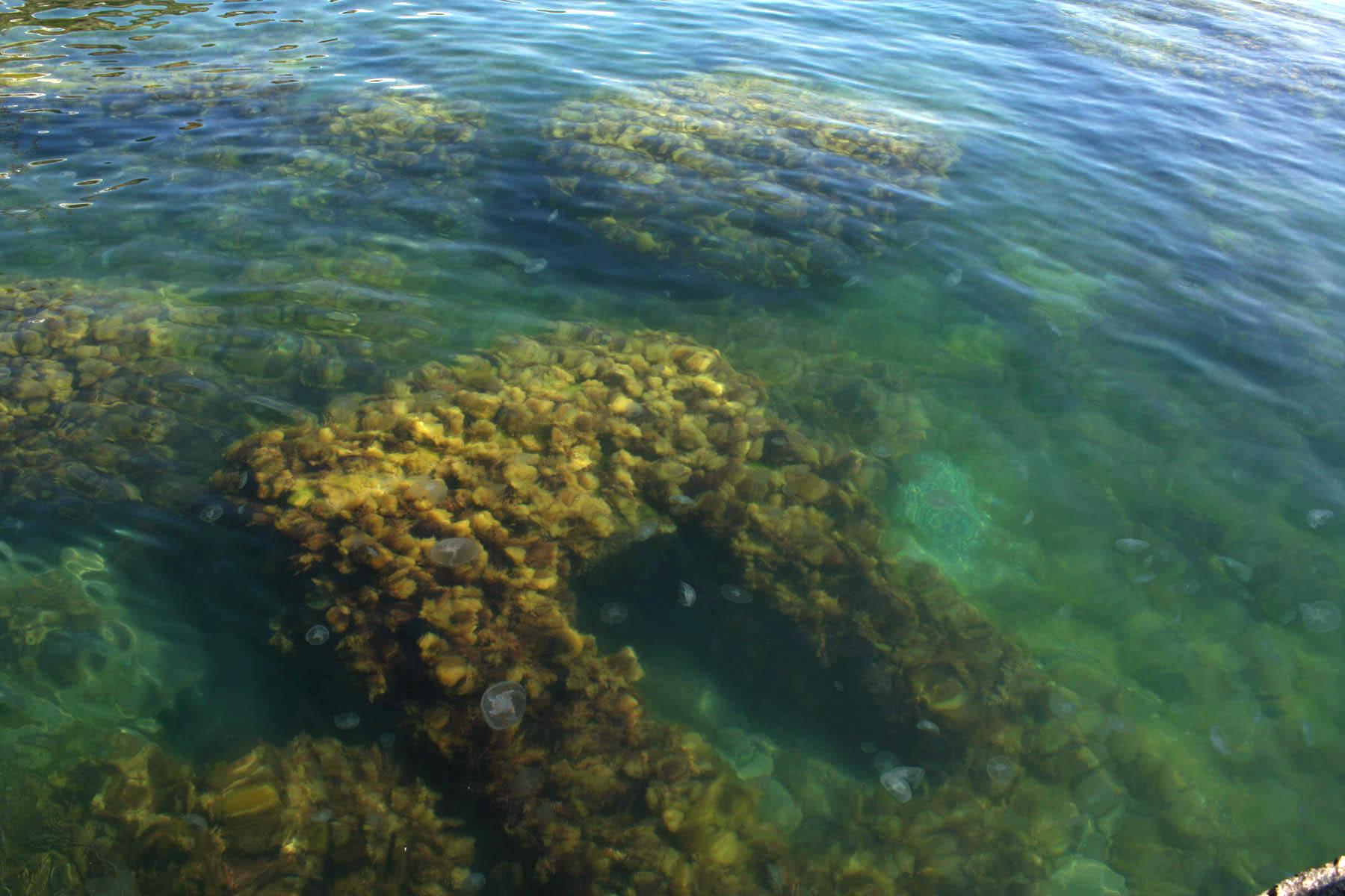 Еще глубже под водой