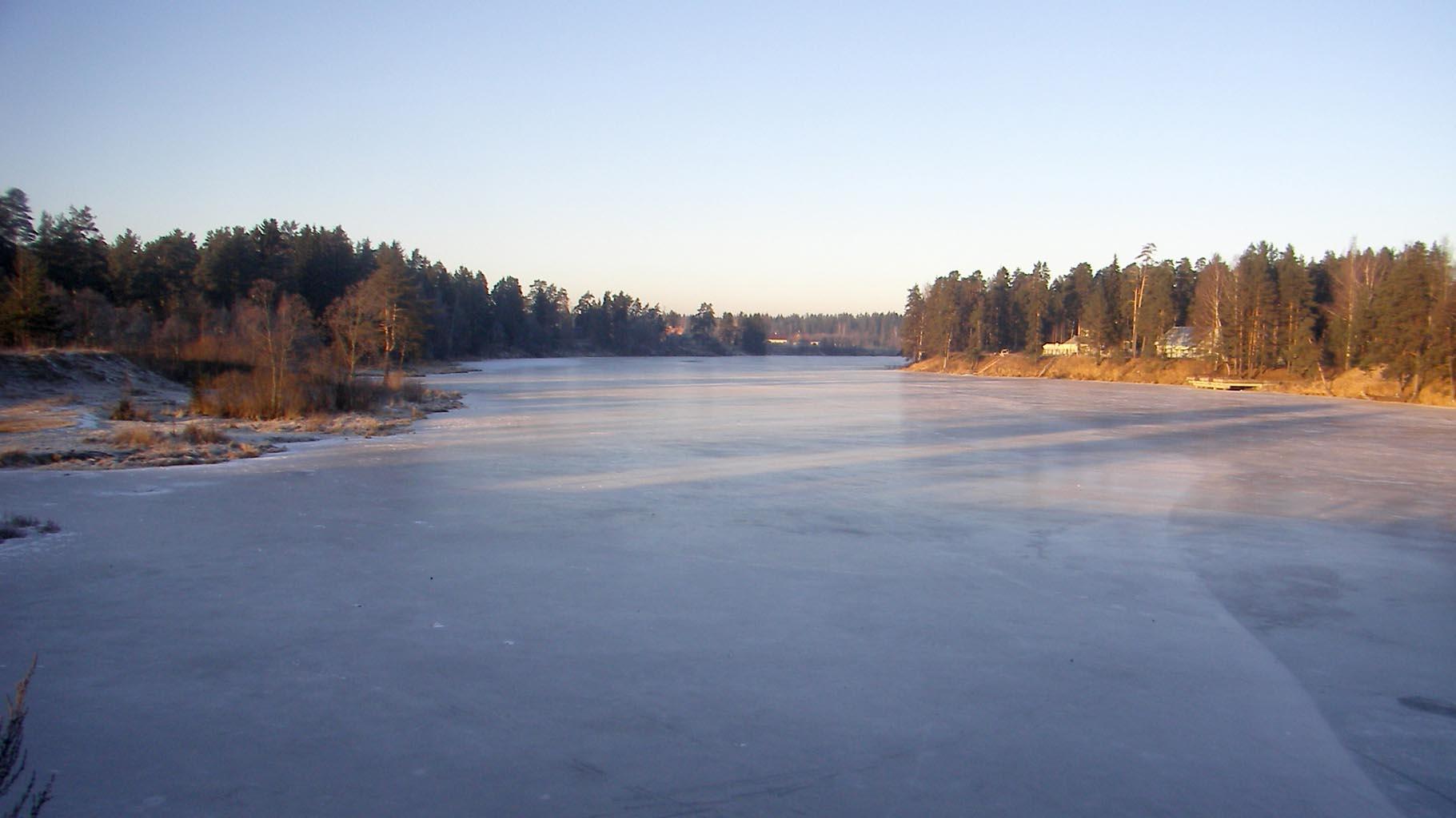 Много льда