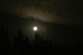 Луна над лесом