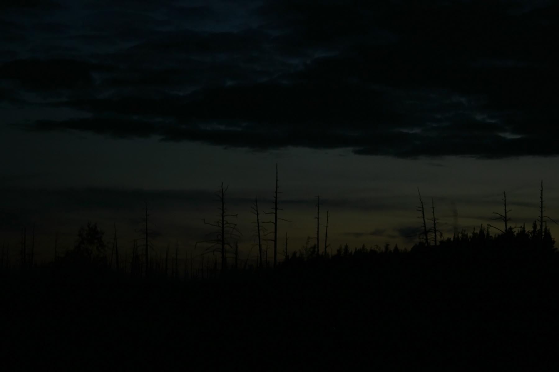Зловещее болото