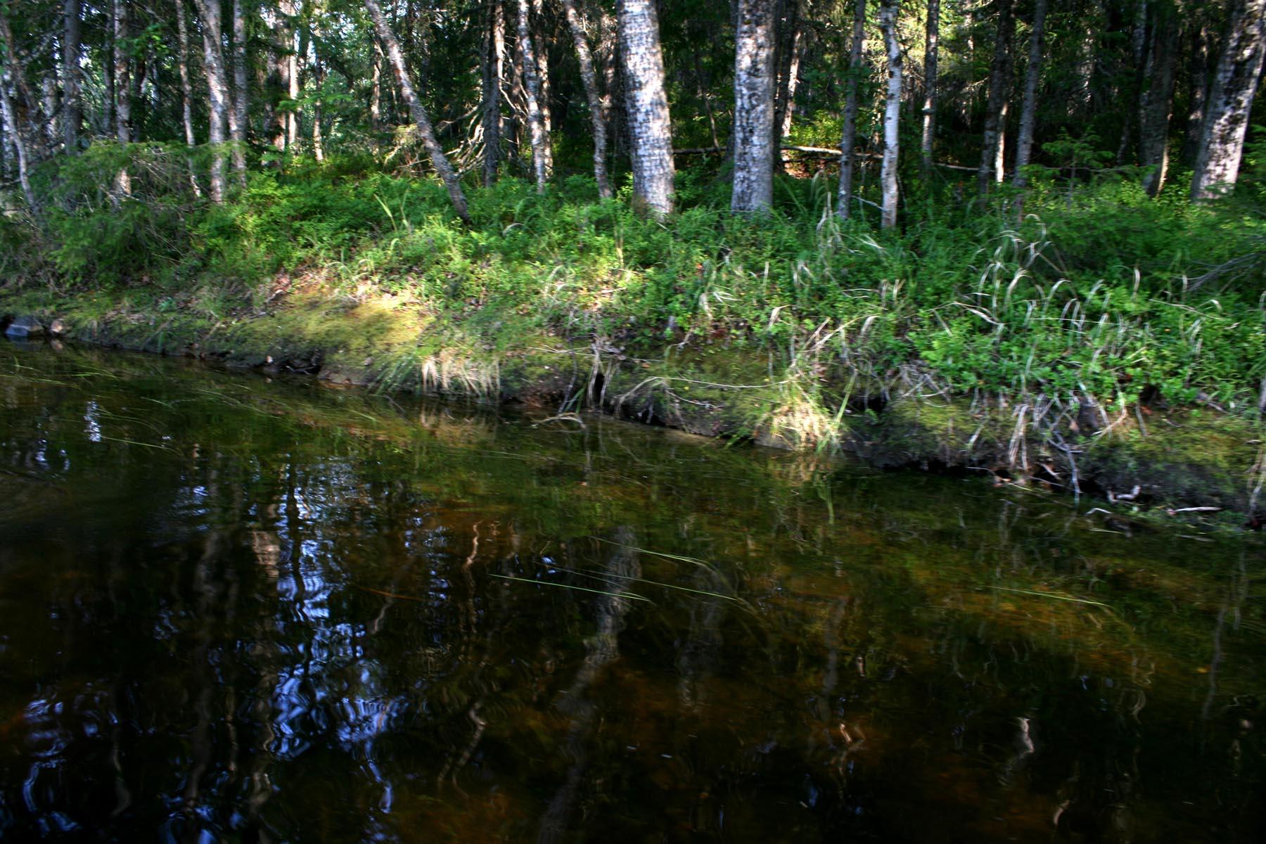 Между озер