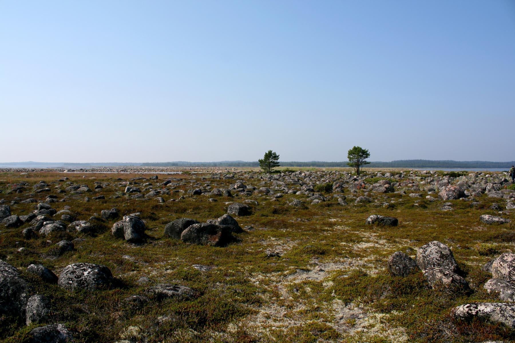 Каменное поле