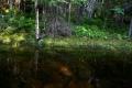 Отражение в прозрачной воде
