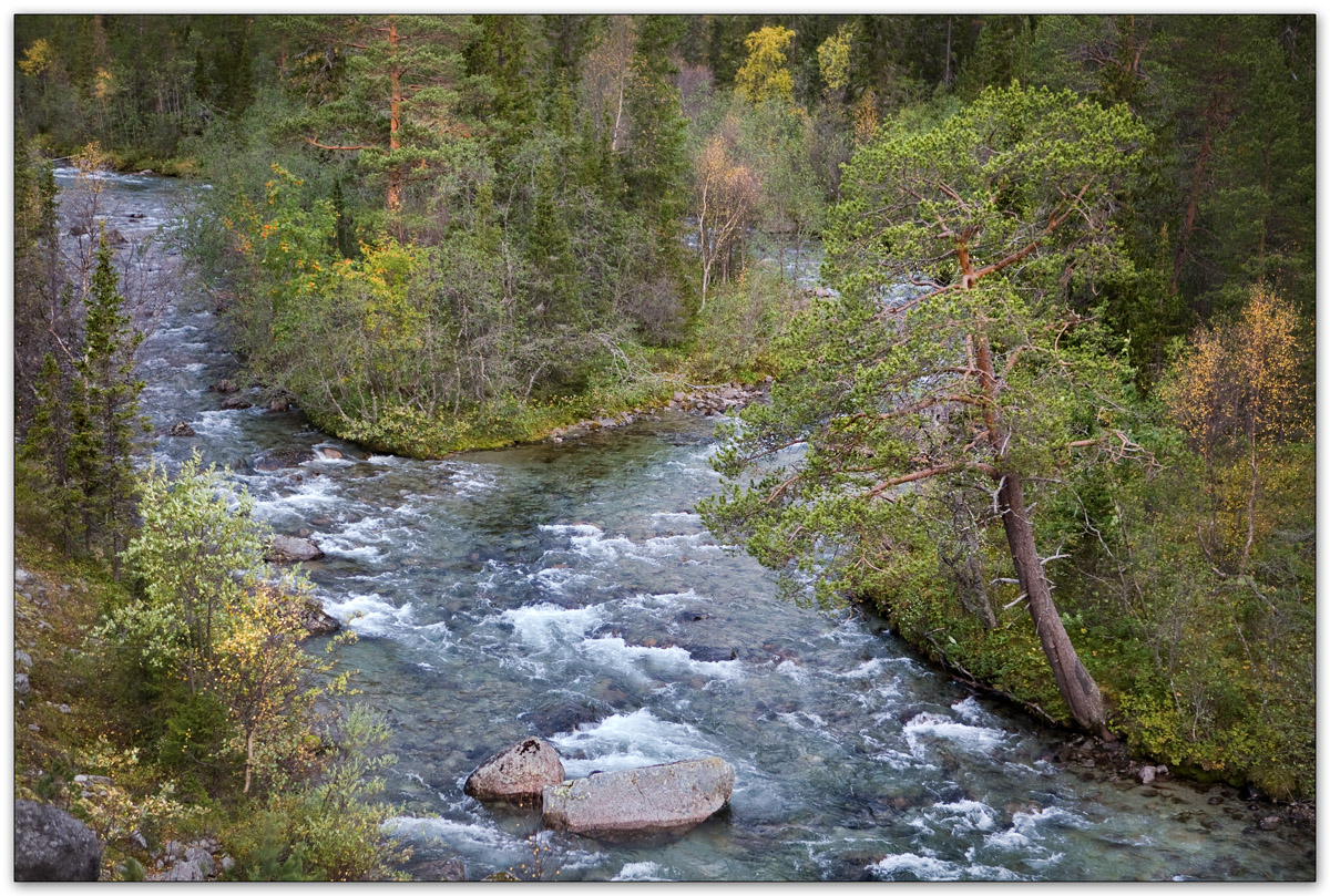 Снова речка Кунийок