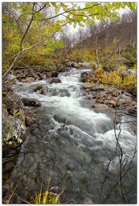 Речка Орайоки