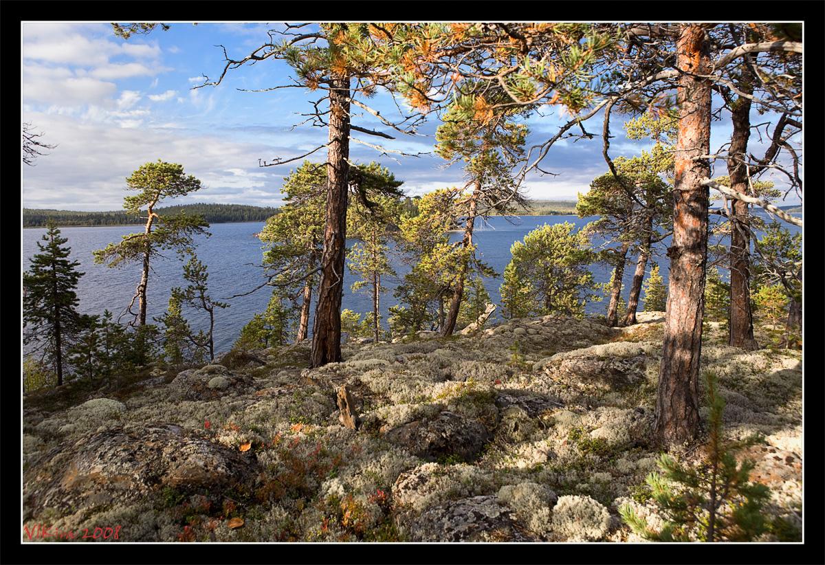 Терский (северный) берег Белого моря