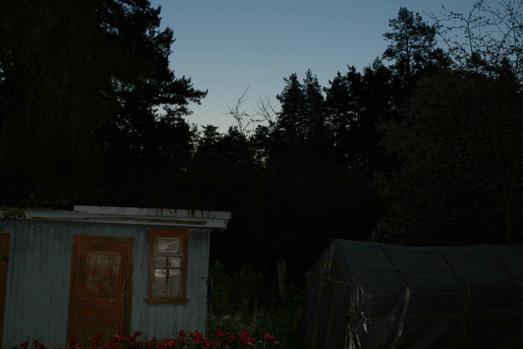 Солнце встает на севере